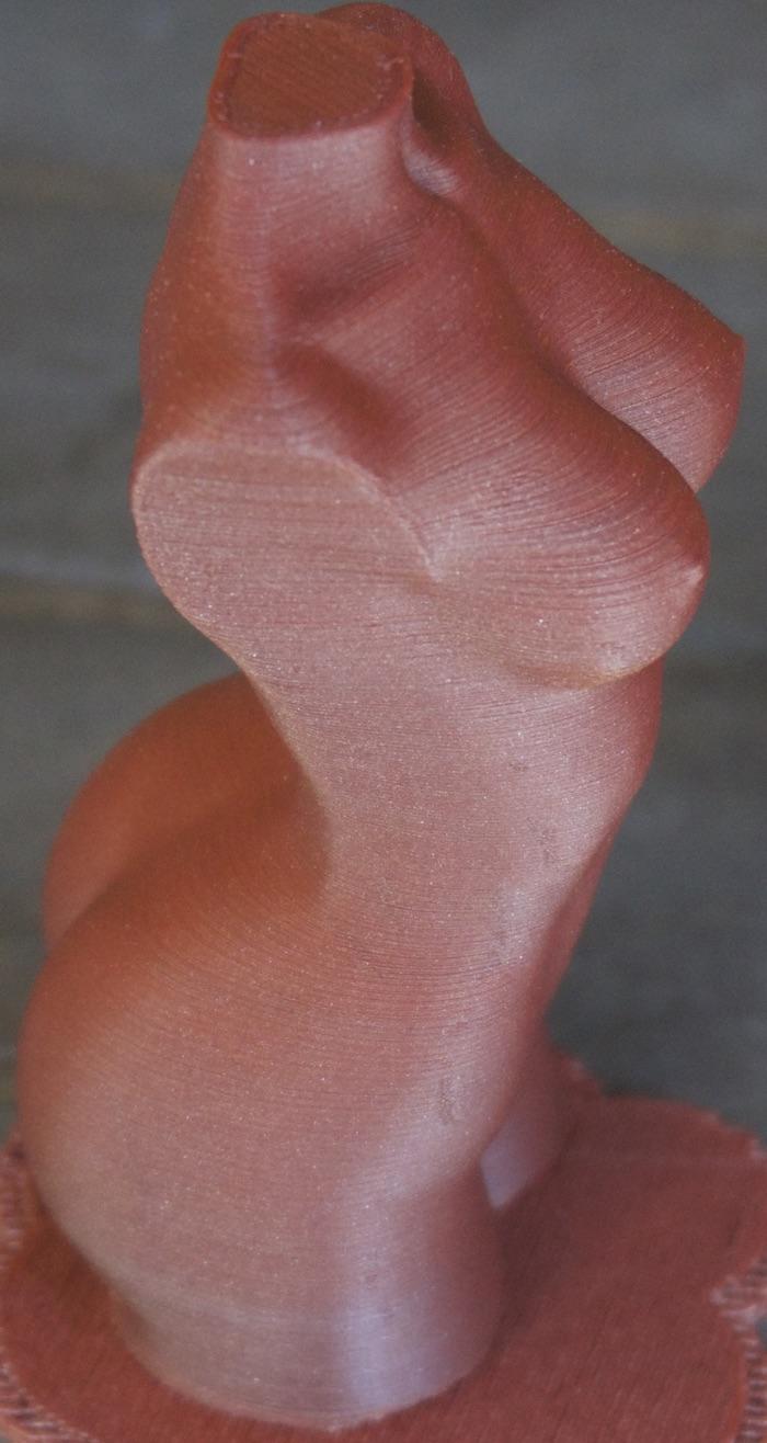 Le buste imprimé en haute résolution et sans traitement