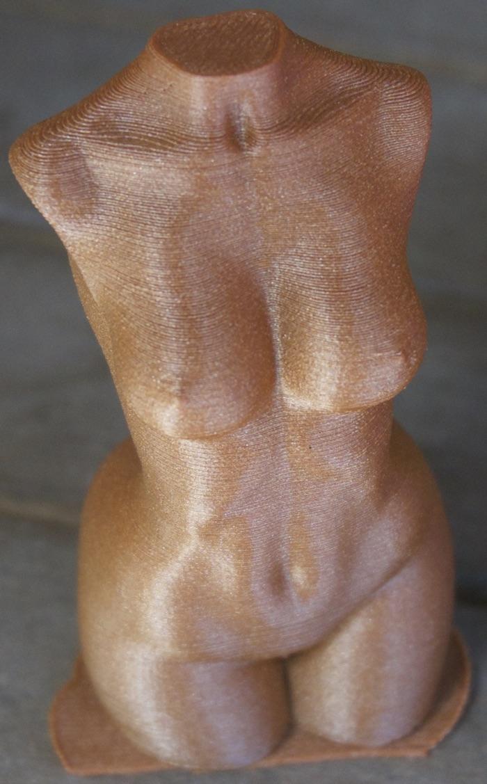 Le buste imprimé en basse résolution et traité à l'acétone.